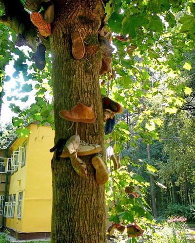 Чудо-дерево-05