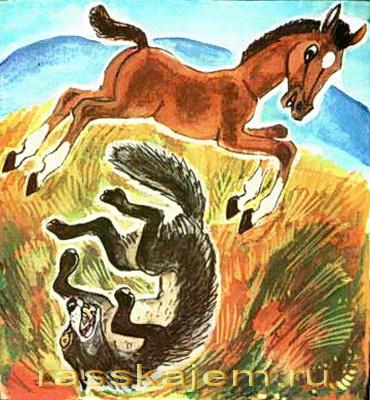Волк, собака и кот