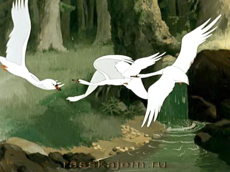 Гуси-лебеди9