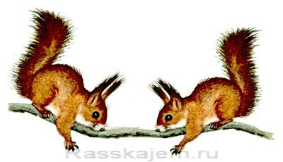 Сказка об умном мышонке-09-1