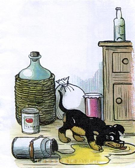 щенок Михалков-4